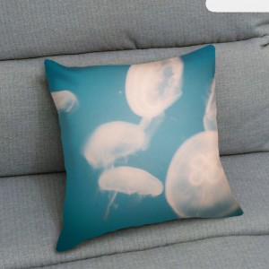 UMade-_-ThrowPillow_PL01-WD01-A02_img01