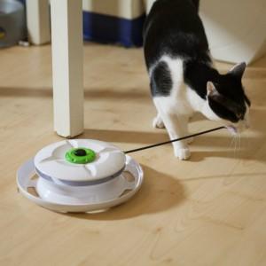 台灣WANTi 六合一互動貓玩具-22