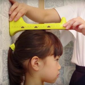 日本 Hashy 長頸鹿電子身高測量器