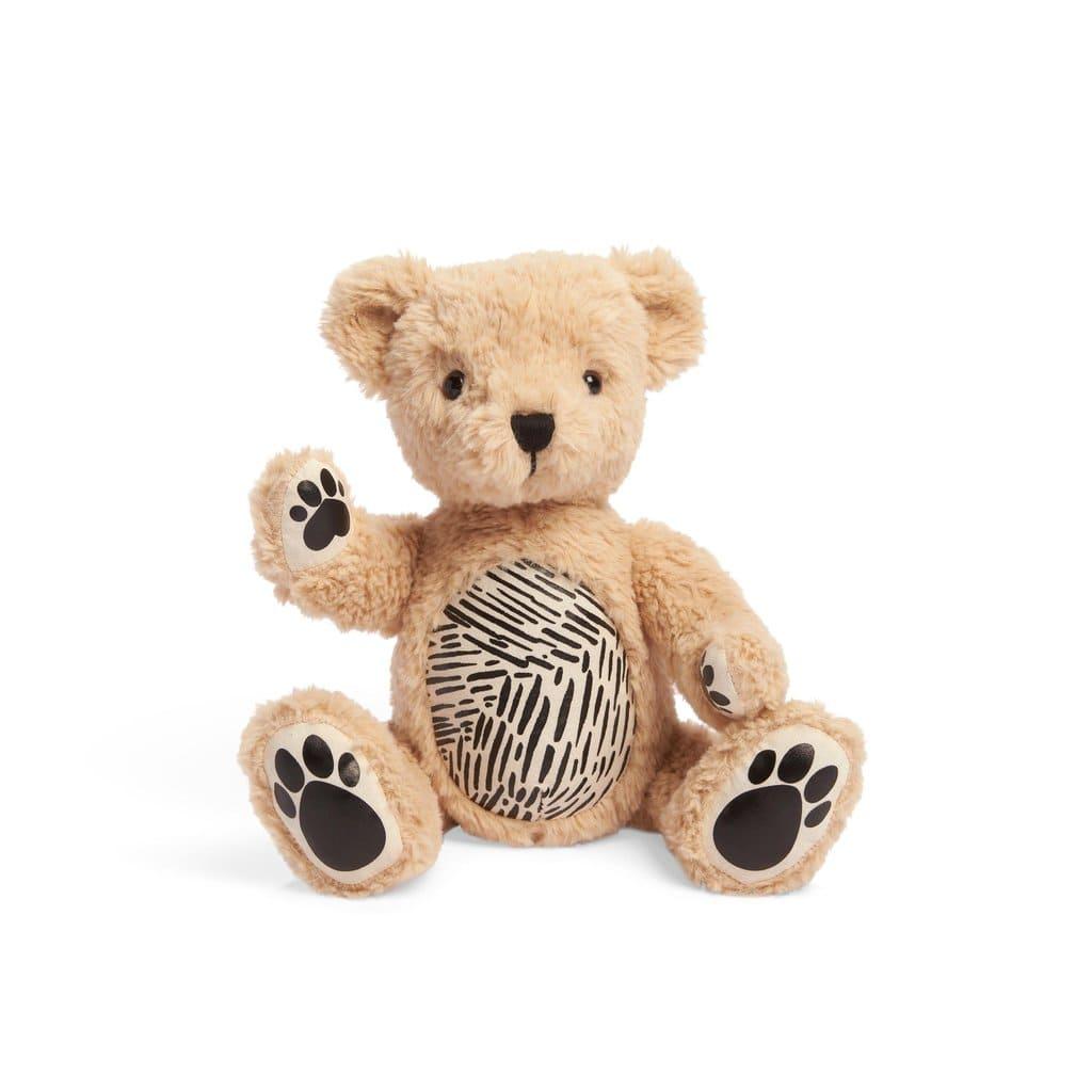 紐西蘭 Seedling Parker 擴增實境小熊2