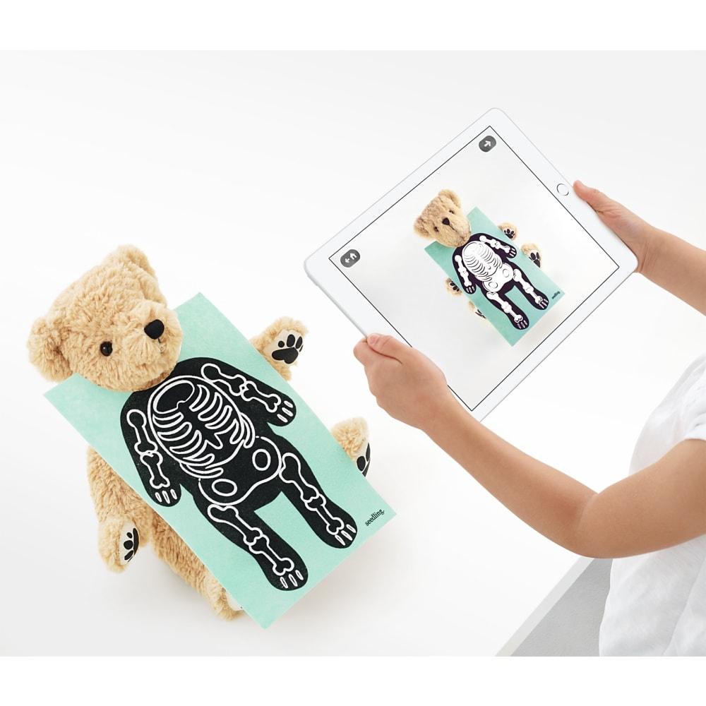 紐西蘭 Seedling Parker 擴增實境小熊7