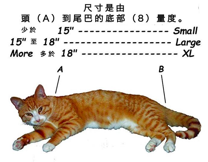印度 Cat in the Bag 貓貓外出袋1
