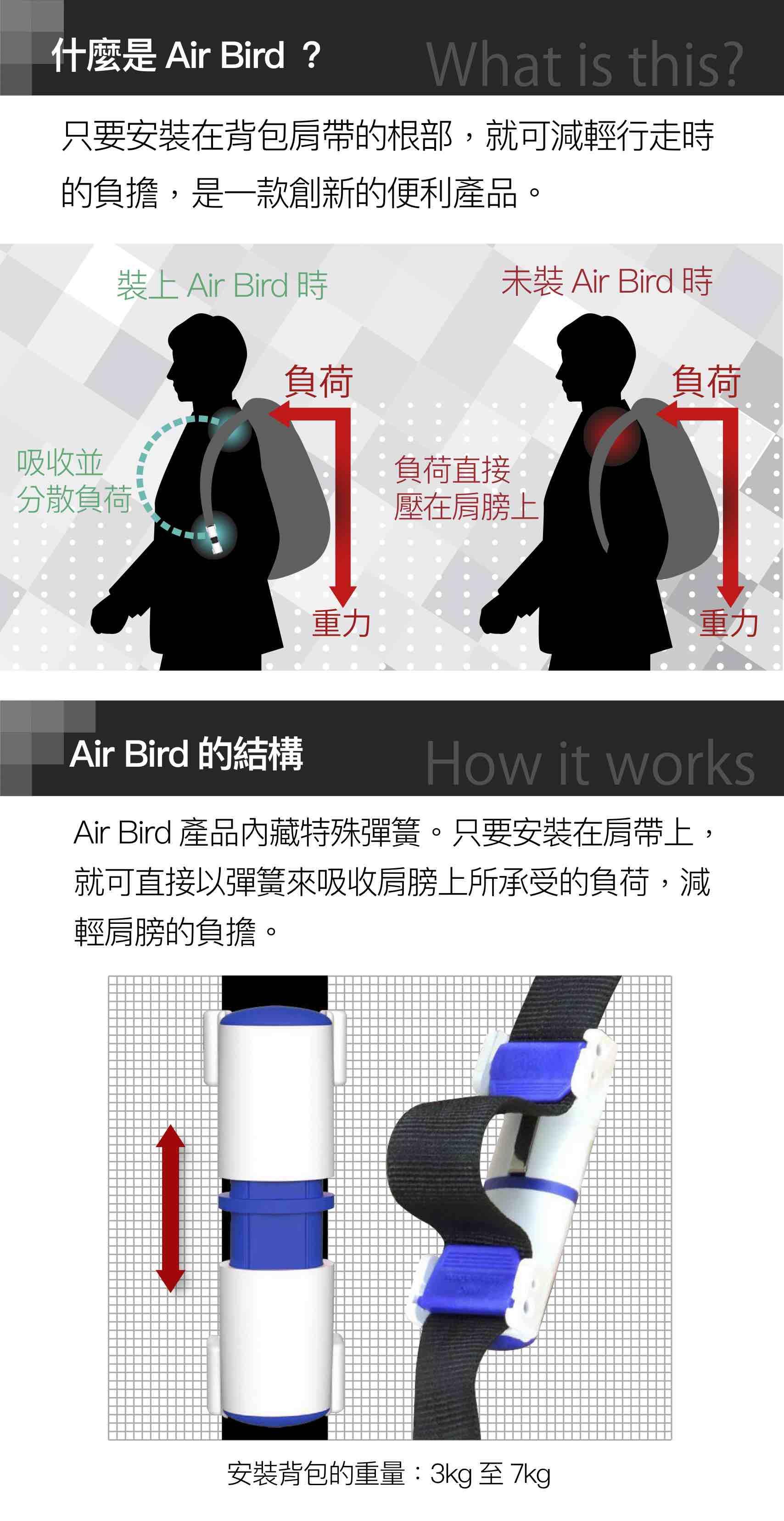 airbird4
