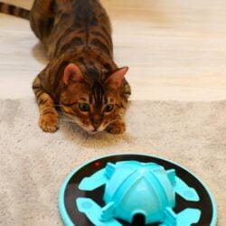 Tricky Paw 與一般智能玩具不同,不會移動,即使空間不夠大也能使用,以LED 閃爍及仿生物聲音吸引貓咪,內有9種閃爍模式,觸發貓咪的狩獵本能,加上磨抓膠,可訓練磨爪,對貓咪好處多多!
